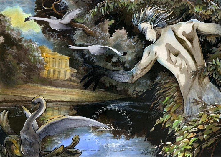 The Swan Lake Project